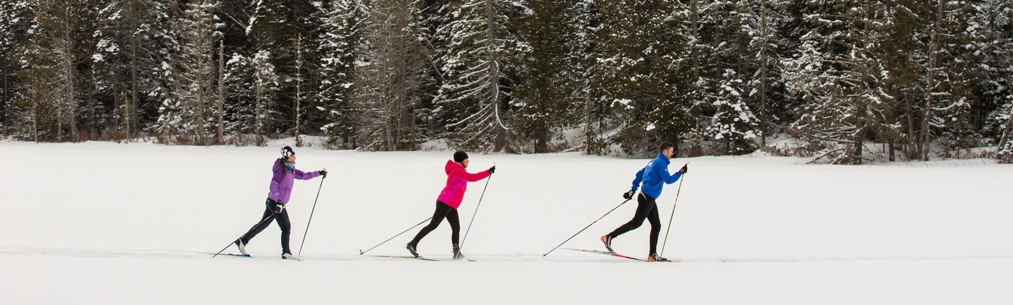 Picture of Nordic Ski Tour