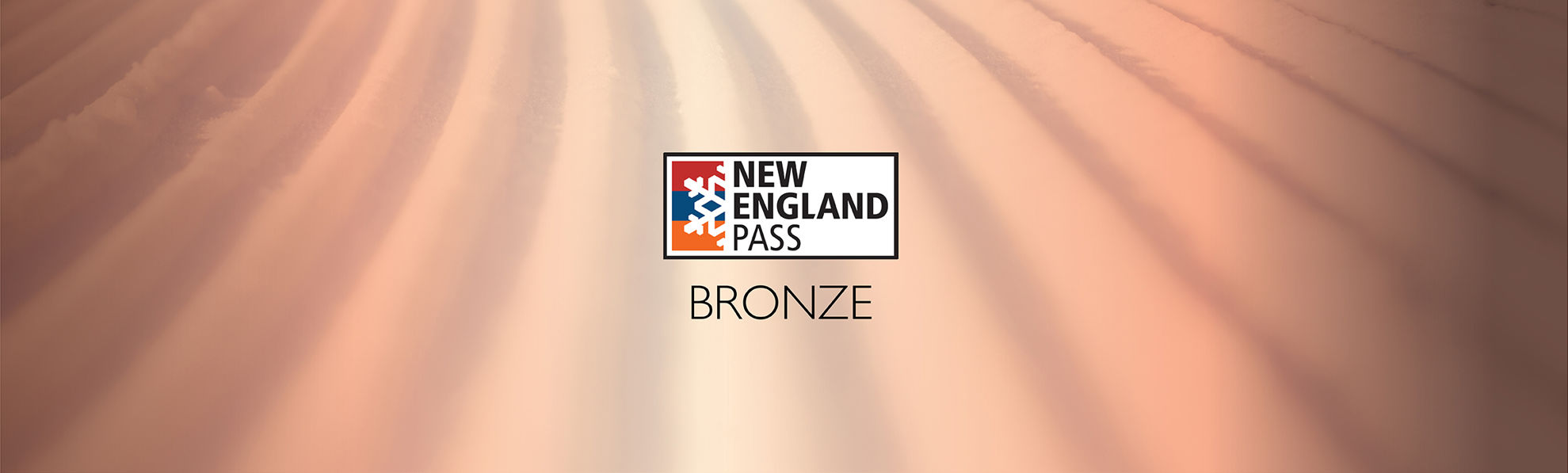 Picture of Bronze Pass